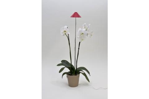 Sunlite - Lampe Horticole avec Piétement Téléscopique - Rouge