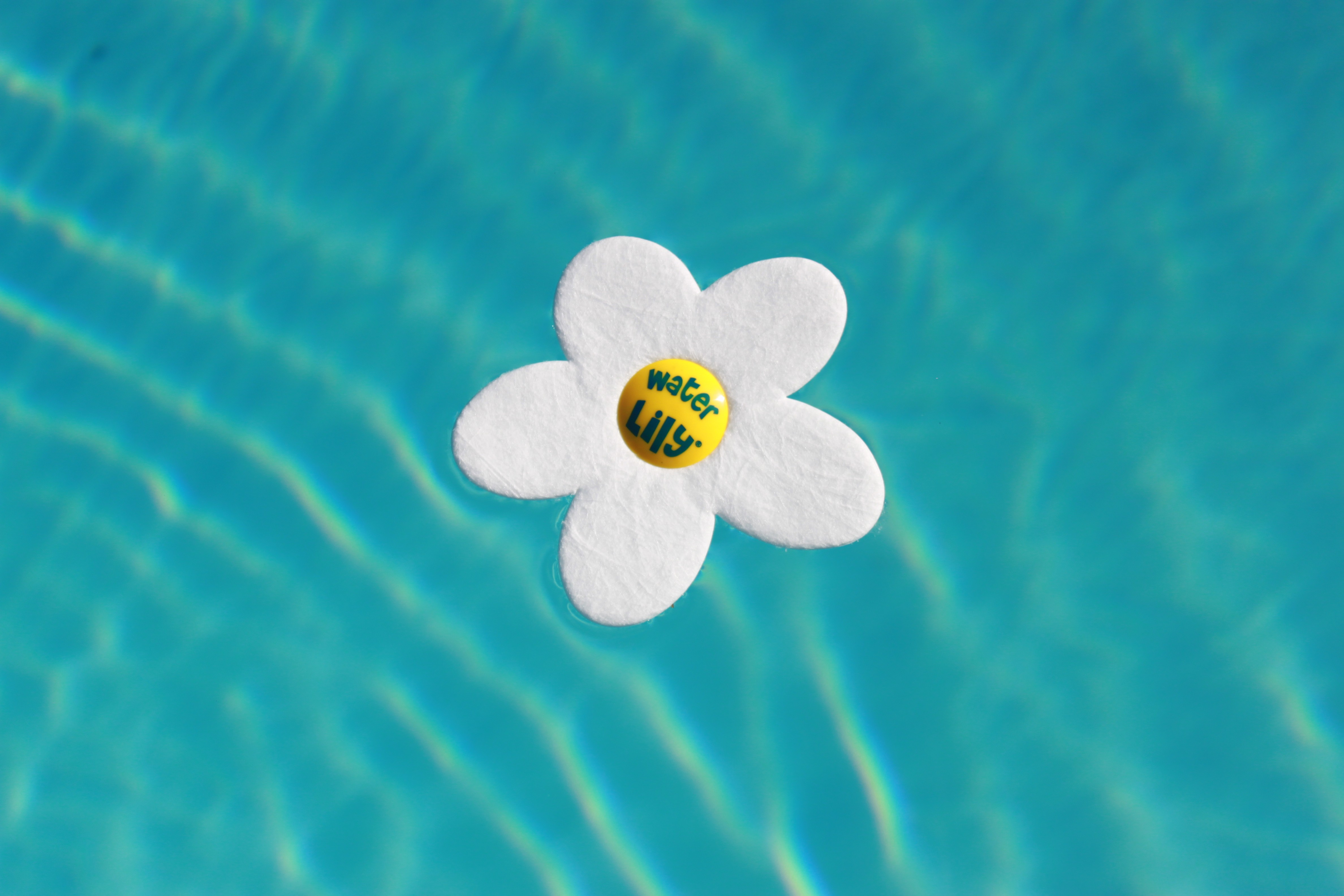 Waterlily absorbant r sidus gras piscines spas for Accessoire piscine 78