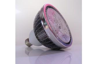 Ampoule Horticole Culture 18W
