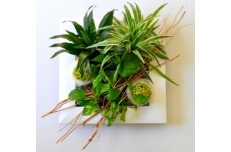 Tableau Floral Papao - Cadre bois blanc