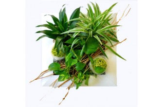 Tableau Floral TIKI petit model - Cadre PVC blanc