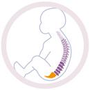 ergonomique pour le dos du bébé